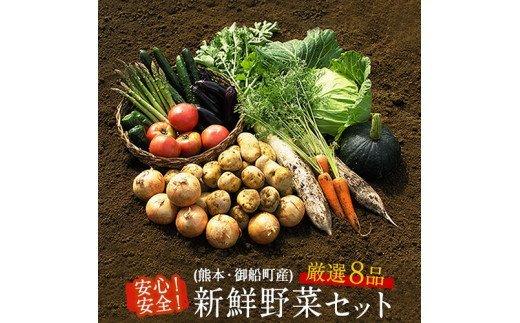 安心・安全の熊本県御船町産 厳選8品目 安心・安全の新鮮野菜セット《30日以内に順次出荷(土日祝除く)》