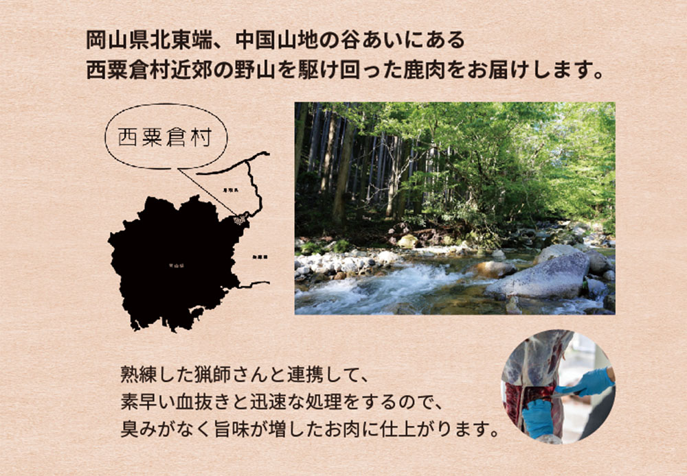 shikasuraisu003アートボード 3.jpg
