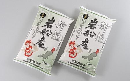 AB4019 【令和3年産米】特別栽培米  岩船産コシヒカリ玄米 10kg
