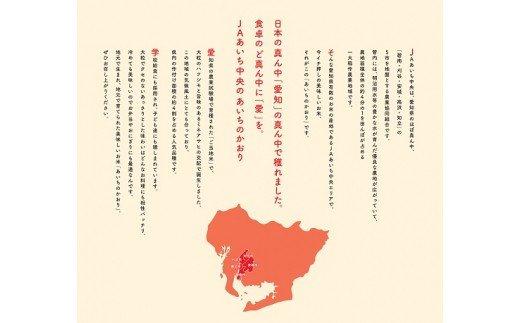 【定期便】愛知県産 あいちのかおり 玄米 10kg×12回(計120kg) H017-034