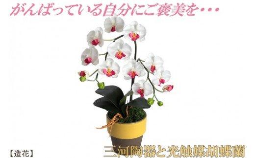 綺麗で丈夫な三河陶器で贈る 光触媒胡蝶蘭(やまぶきの陶器×白桃色の花) H100-001