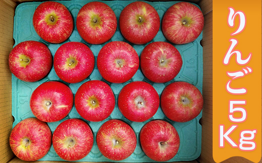 【2609-0120】[先行予約]完熟りんご5kg箱(ふじ)