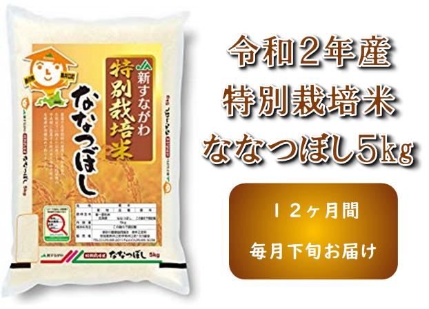 【新米】令和2年産 JA新すながわ産 特栽米ななつぼし定期便(5kg×12ヶ月)