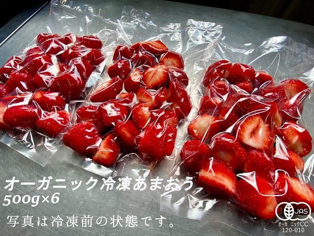 オーガニック冷凍あまおう 3kg(500g×6パック)_PA0619