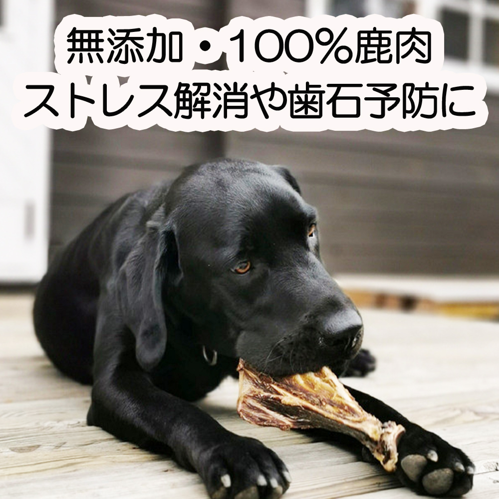 A98 森のジビエ for PET 鹿あばら&肩甲骨ジャーキーセット【中型・大型犬向け】