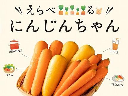 『えらべるにんじんちゃん』 3品種食べ比べセット 3kg H116-001