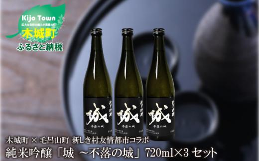 K21_0013  <木城町・毛呂山町 新しき村友情都市コラボ 日本酒 純米吟醸「城 ~不落の城」3本>