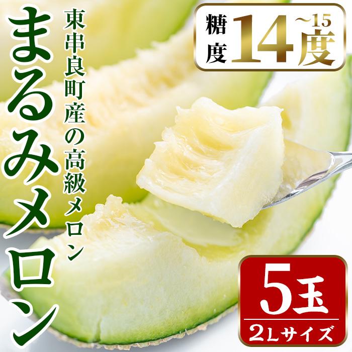 【45686】鹿児島県東串良町産の高級アールスメロン(2L×5玉)【まる美園芸組合】
