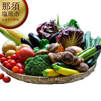 154-1025-02 季節の野菜詰め合わせセット