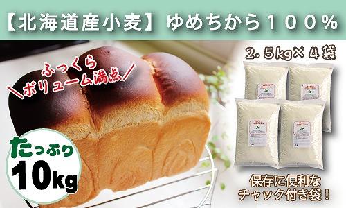 パン用小麦粉 北海道産ゆめちから 10kg(2.5kg×4袋) 定期便12回 H008-061