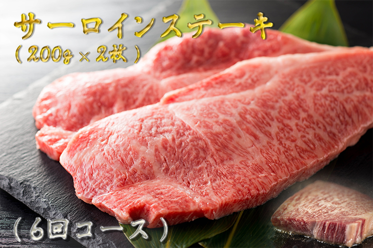 BG179_【訳あり】最高級佐賀牛サーロインステーキ年6回コース(200g×2)