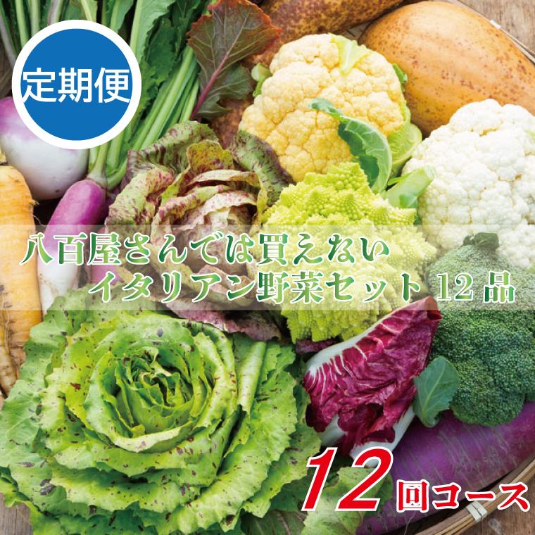 BG161_【定期便】八百屋さんでは買えないイタリアン野菜セット(12品)(12回コース)
