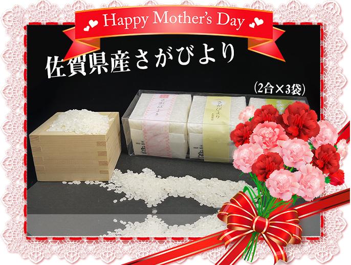BG223_【母の日企画:5/9までにお届け】佐賀県産さがびより キューブ米 (2合×3袋)