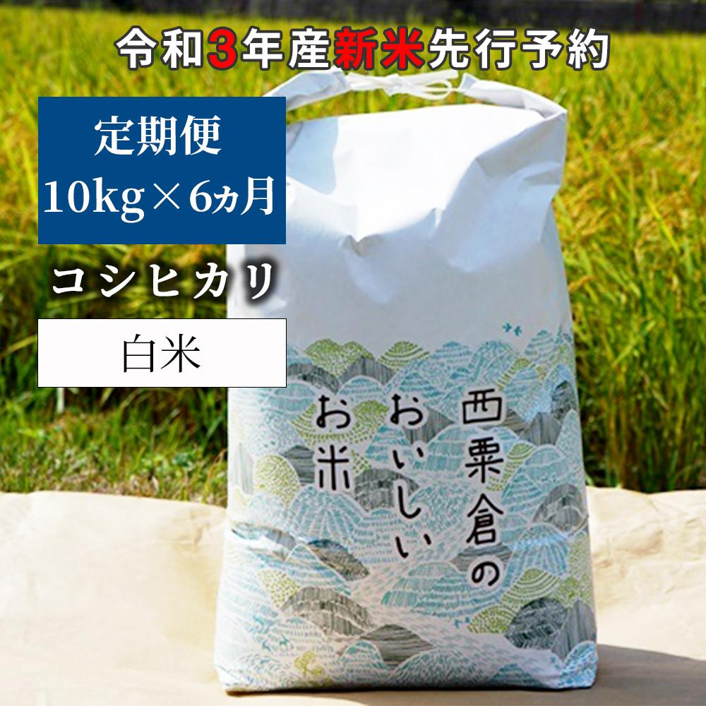 W84<令和3年産 新米定期便予約> あわくら源流米 コシヒカリ 白米10kg×6