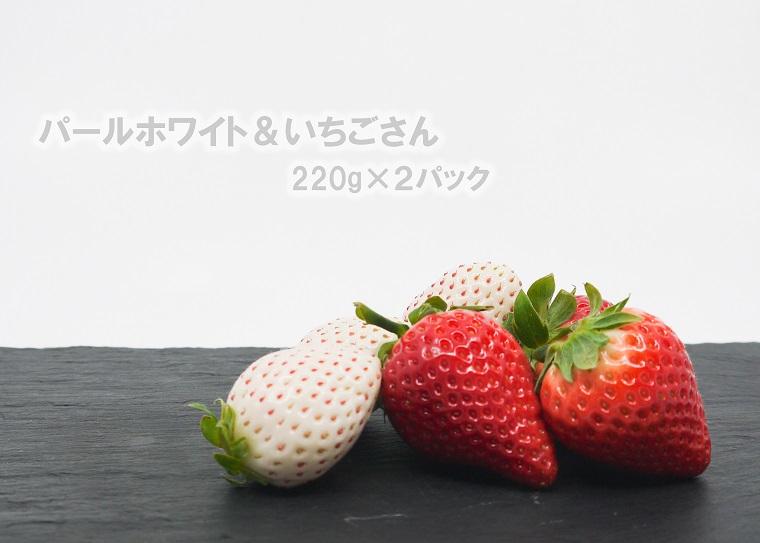FA009_佐賀県産 パールホワイト&いちごさん 220g×2パック 【12月15日~4月20日発送】