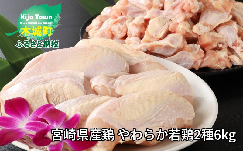 K16_0027_1 <宮崎県産鶏 やわらか若鶏2種6kg>