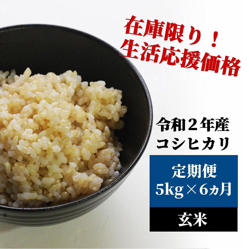 <令和2年産>K14定期便 あわくら源流米 コシヒカリ 玄米5kg×6
