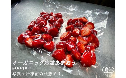 オーガニック冷凍あまおう1kg(500g×2パック)_PA0617
