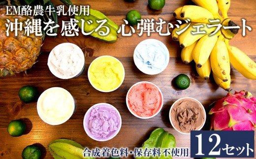 【EM酪農牛乳使用】沖縄を感じる 心弾むジェラート12個セット