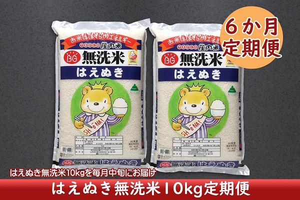 <4月開始>庄内米6か月定期便!はえぬき無洗米10kg(入金期限:2021.3.25)