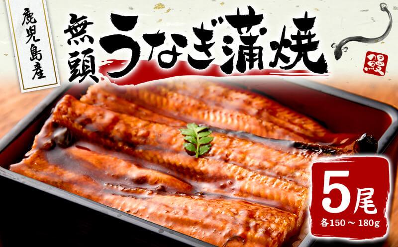 大隅産 うなぎ 蒲焼 750g