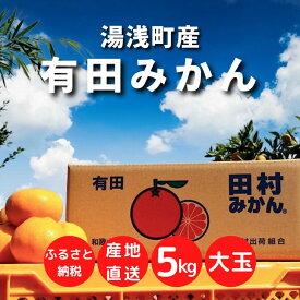 ZE6345_【大玉】和歌山 湯浅町産 田村みかん 5kg ※着日指定不可