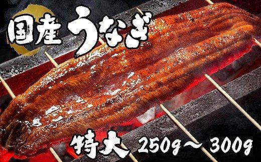 BYA4:国産 特大 うなぎ蒲焼 1尾(真空瞬間冷凍)