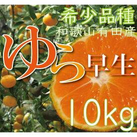 CC6103_濃厚な味わいゆら早生みかん10kg 希少品種《有機質肥料100%》  ※沖縄及び離島は配送不可