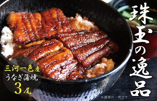 三河一色産 鰻蒲焼き 珠玉の逸品 3尾 H106-007