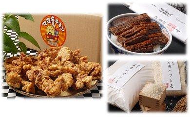 「マヨ唐チキン」と「炭かおる地焼き うなぎ蒲焼(たれ付)」と「岐阜米ハツシモ1等米」のセット