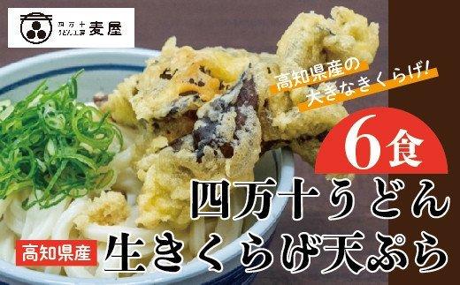 21-795.【数量限定】四万十うどんと生きくらげの天ぷら6食セット