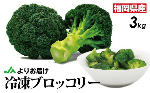 JAむなかたブロッコリー部会より!冷凍ブロッコリー3kg(1kg×3袋)_PA0623
