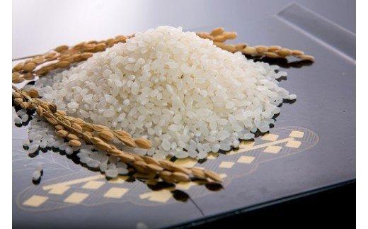 A-035 山口の美味しいお米定期便 5㎏×12回(白米)