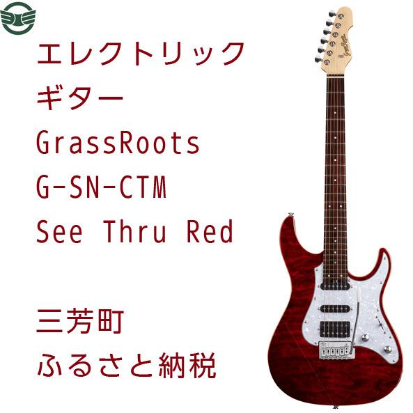 【ふるさと納税】エレクトリックギター G-SN-CTM See Thru Red