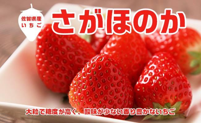 AE001_ あま~い!!キンド酵素栽培いちご【さがほのか270g×4パック】