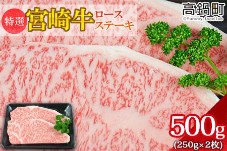 <特撰宮崎牛ロースステーキ 500g>翌月末迄に順次出荷【c507_hn】