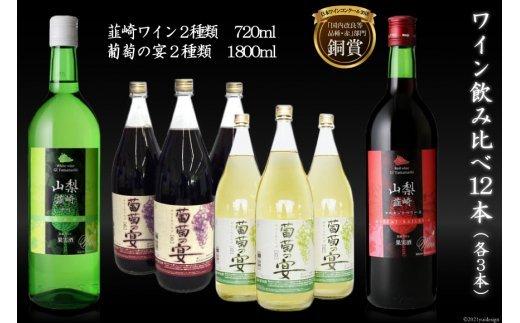 3-21.ワイン飲み比べ12本セット