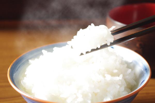 齋藤農場の特別栽培米 ササニシキ等 各5kg 15kg