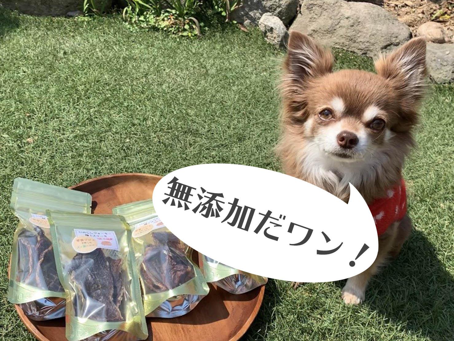 DT004_犬の無添加おやつ☆天然いのししの極上ステーキジャーキー