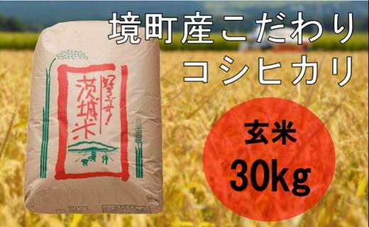 S173【数量限定】【令和3年産】境町のこだわり玄米「コシヒカリ」30kg