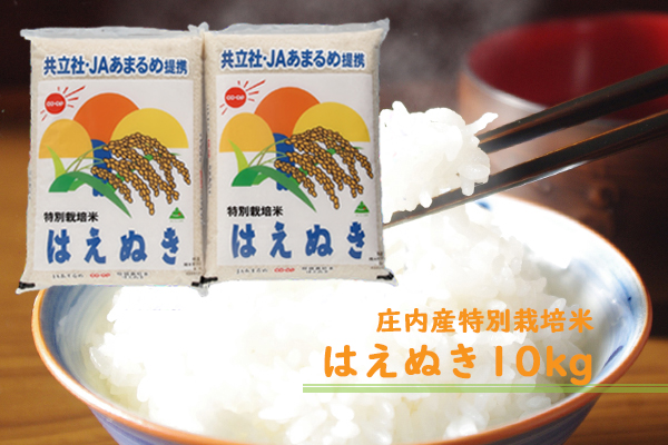 庄内町余目産 特別栽培米はえぬき10kg