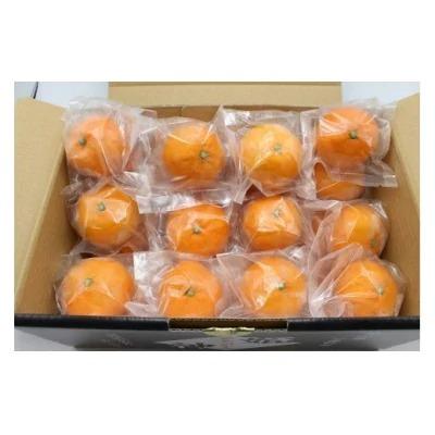 急速冷凍!冷凍みかん JAむなかた柑橘ブランド「姫の神」2㎏ 甘くておいしいみかん_PA0269
