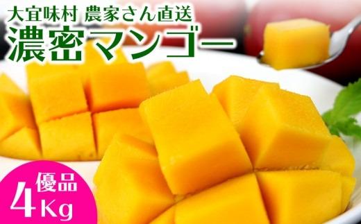 濃密マンゴー《優品・4Kg》【2021年発送】大宜味村農家さんから直送!