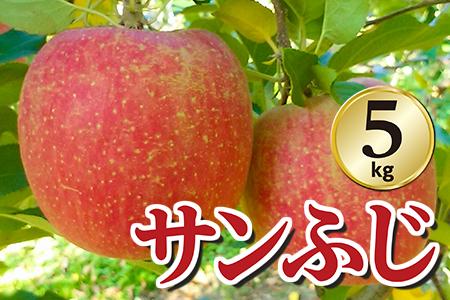 【2609-0116】【期間限定】矢板特産 樹上完熟もぎたてりんご(サンふじ)5kg