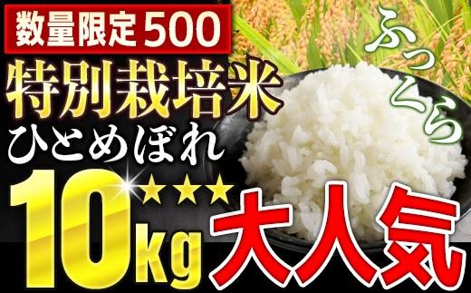 TB1-30 特別栽培米ひとめぼれ10㎏