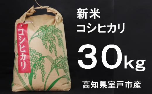 TA030【令和3年産】室戸産新米コシヒカリ30kg