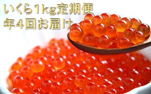 年4回!北海道海鮮紀行いくら(醤油味)割安な定期便【1kg(250g×4)×4回(2月・5月・8月・11月)】