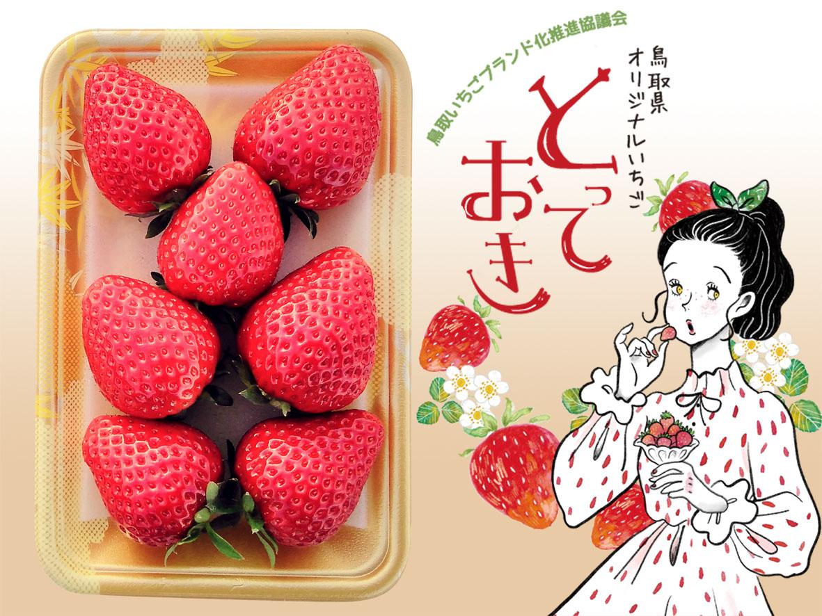 554 鳥取県新ブランド苺 「とっておき」詰合せ