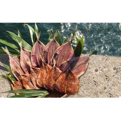 宗像大島で獲れた「鮮魚の干物」の詰め合わせセット【10~11枚】_PA0264