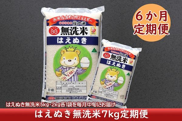 <4月開始>庄内米6か月定期便!はえぬき無洗米7kg(入金期限:2021.3.25)